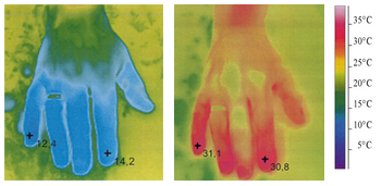 Thermo photograph of a hand in cold water with Ginkgo